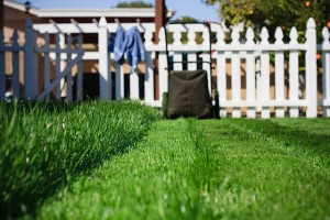 Mowing the lawn can be soothing.  If you ignore everything it means. Image by Sean Hobson via Flickr